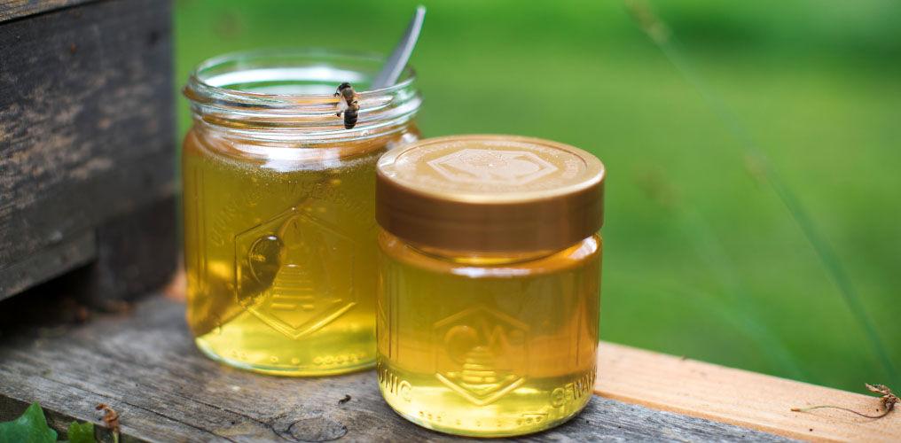 Honig ernten in der Stadt
