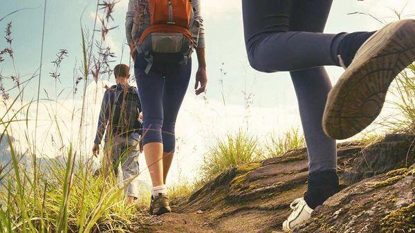 Froschperspektive von drei Menschen beim Wandern.
