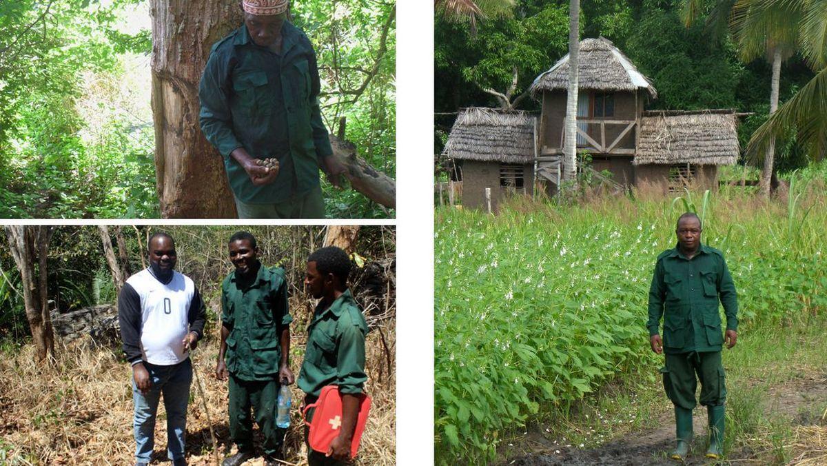 Waldschutz dank unserer Forest-Watcher