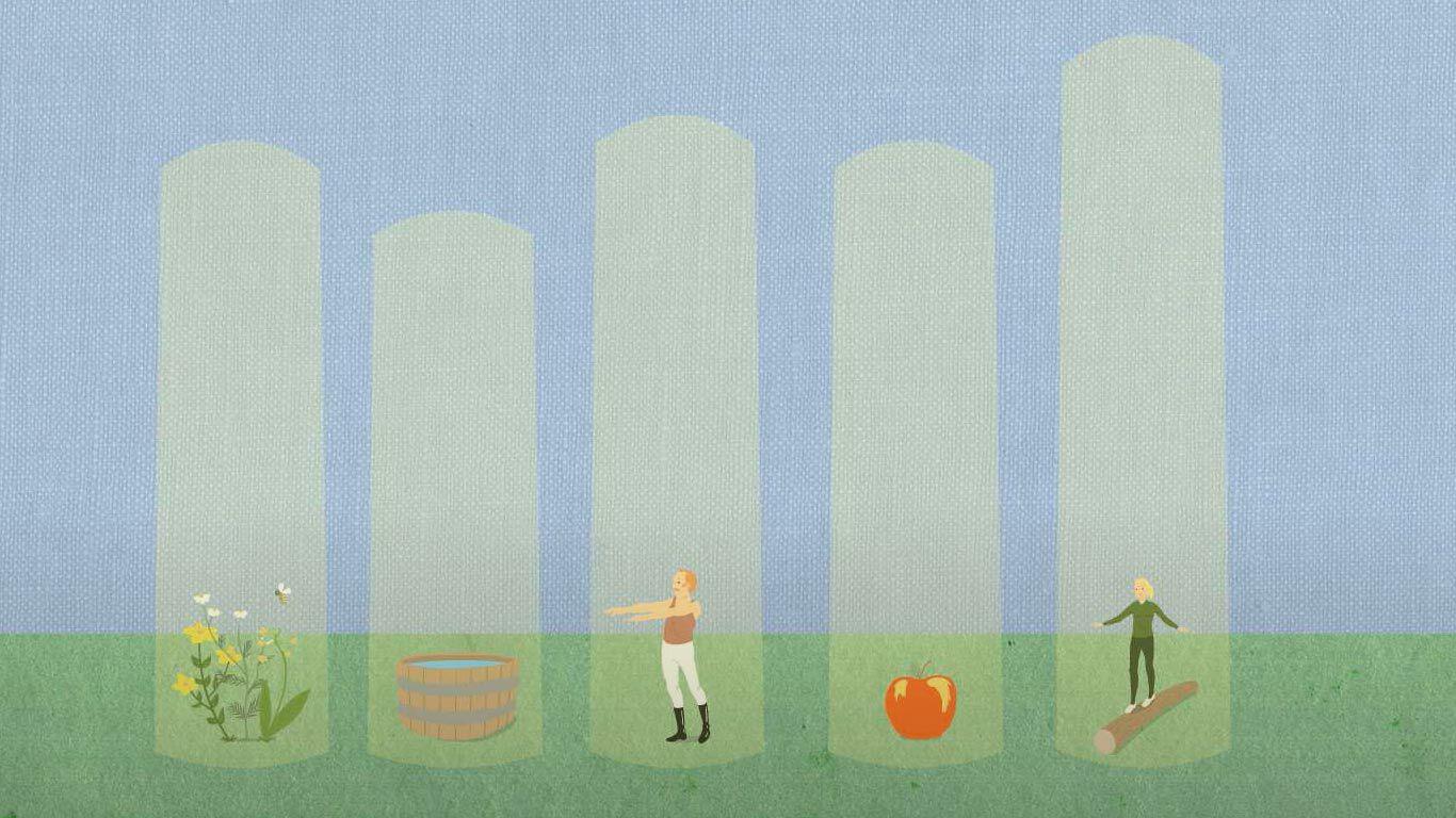 Die 5-Säulen-Philosophie für dein Leben in Balance
