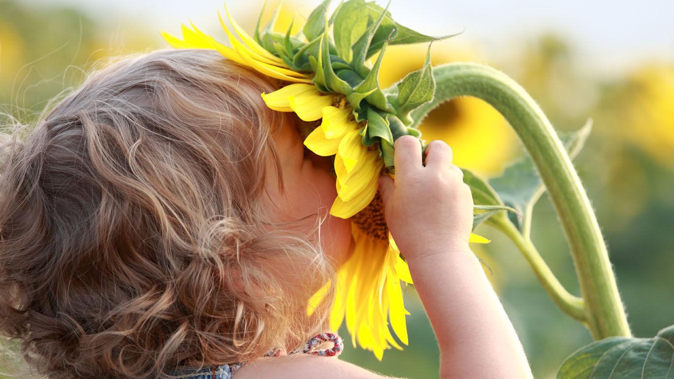 Geruchssinn von Kindern