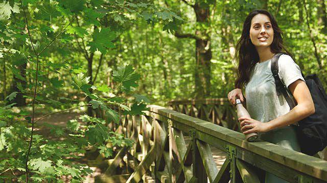 Ein Spaziergang im Wald ist gesund