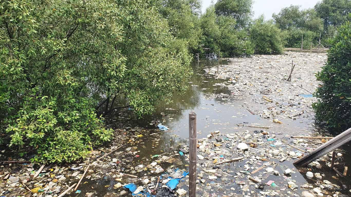 Mit unserem Projekt setzen wir uns gegen den Plastikmüll im Meer ein