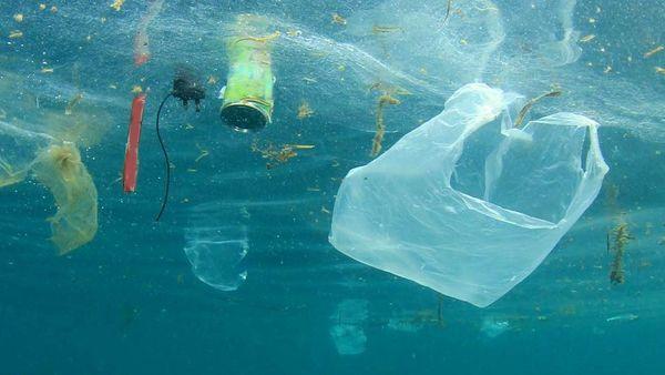 Plastikartikel im Meer.