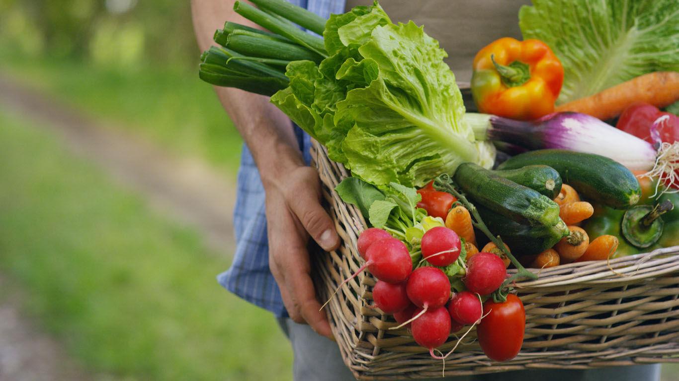 Saisonales und regionales Gemüse in Bio-Qualität