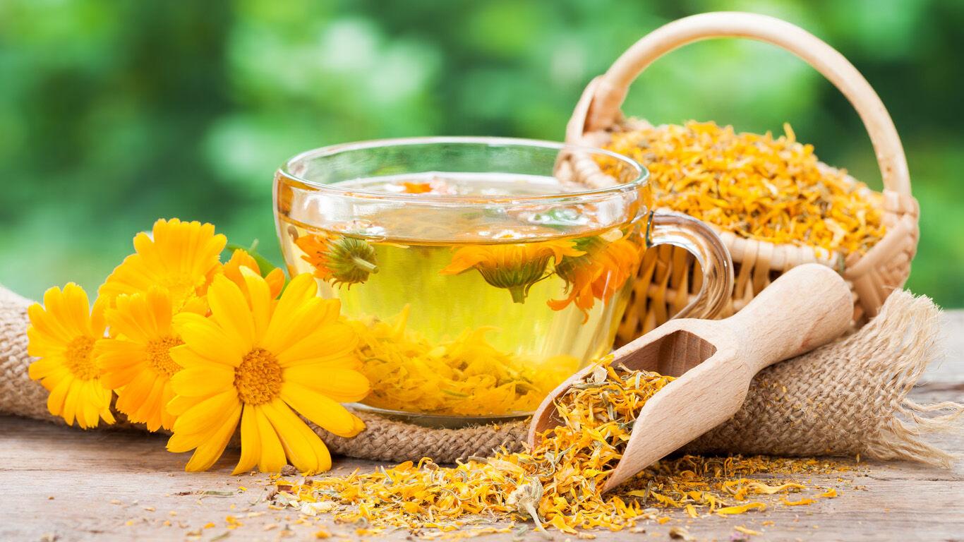 Ringelblume trägt zur Pflege von Sonnenbrand bei