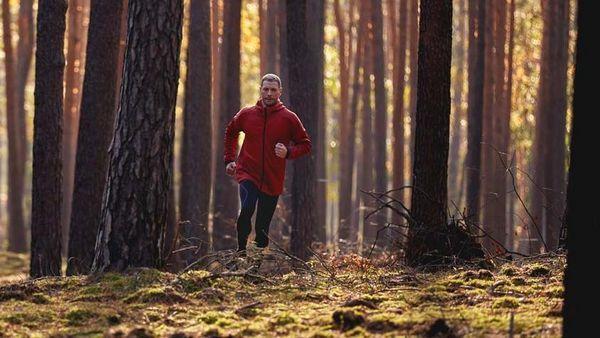 Mann in Trainingsklamotten joggt im herbstlichen Wald.