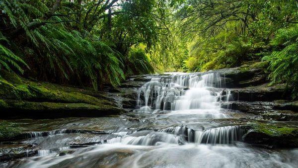 Wasserfall im Grünen.